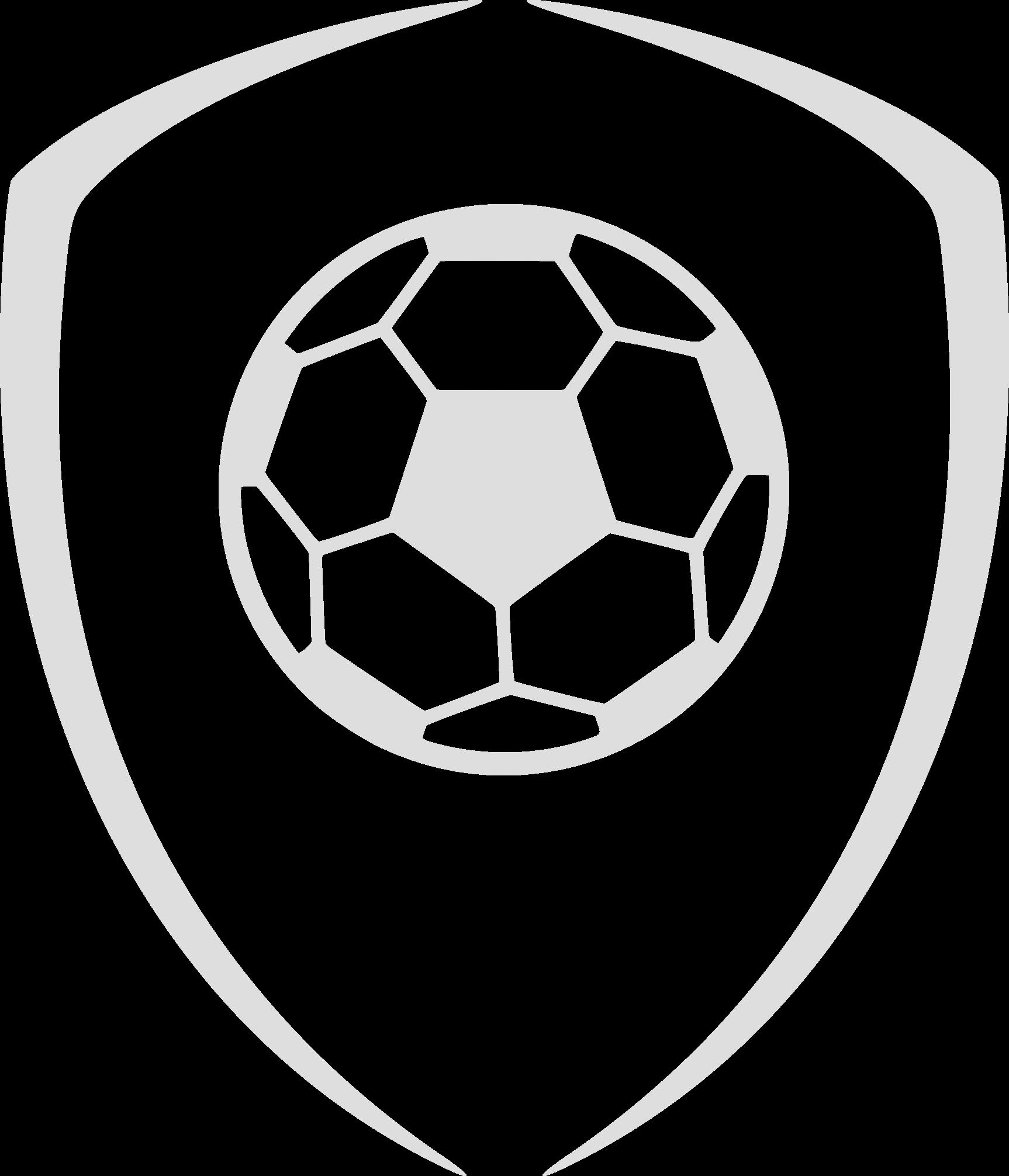 Fußball Online Training